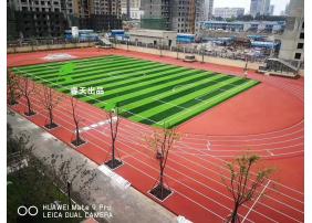 湖北武汉小学分校(光谷十小)
