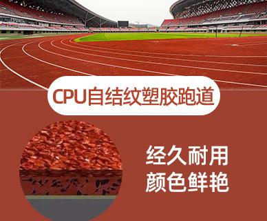 sheng物基CPU跑道